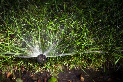IMG_0939_L Sprinkler.jpg