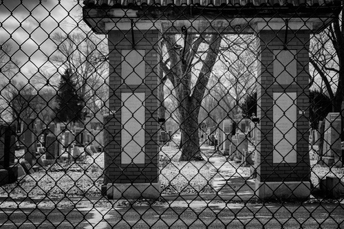 A Fence by John CarusoGear: Canon 7D,  EF 40mm f/2.8 STMExposure: f/5.6 at  1/2500, ISO 500, Natural Light, B/W  conversion in NIK SilverEfex Pro.