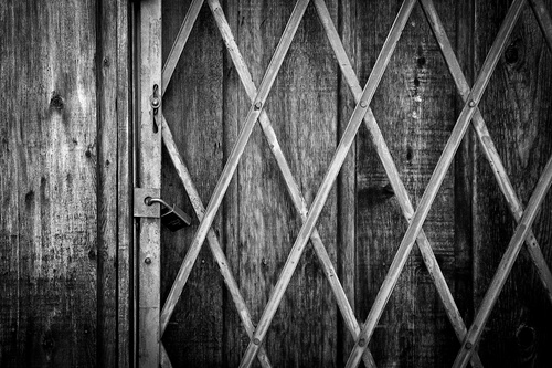 IMG_0846-Edit_L Gated Fence BW.jpg